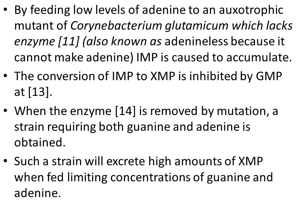 By feeding low levels of adenine to an auxotrophic mutant of Corynebacterium glutamicum which lacks enzyme [11] (also known as adenineless because it cannot make adenine) IMP is caused to accumulate.